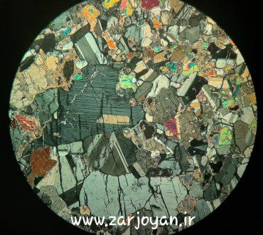 مقطع میکروسکوپی